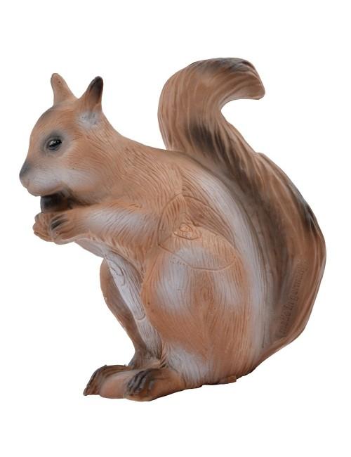 Longlife sitzendes Eichhörnchen