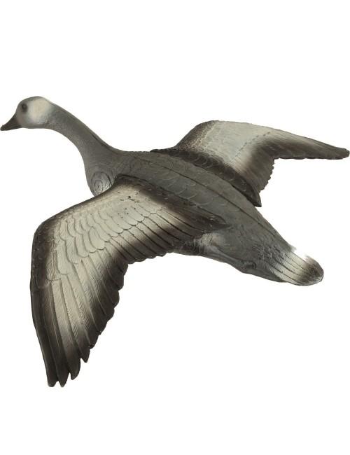 Franzbogen fliegende Graugans