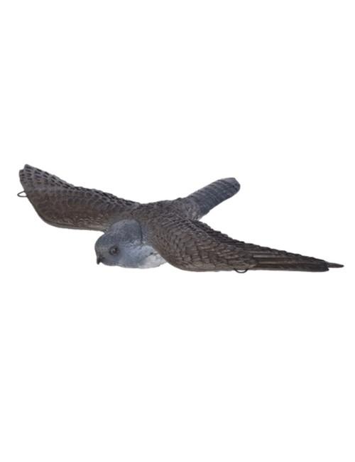 Franzbogen fliegender Falke